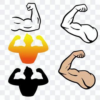 筋肉セット