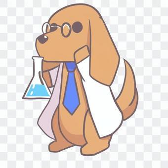 迷你字符臘腸犬實驗