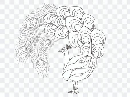 Peacock Coloring Round Uchiwa Style