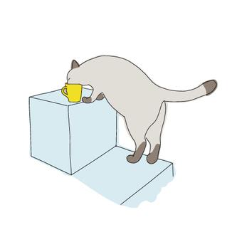 在杯子裡的貓喝水的整個身體