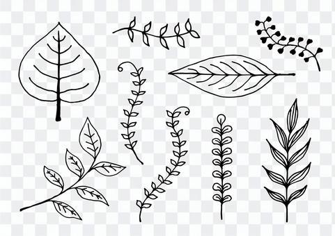 필기 잎 선화 일러스트