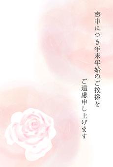 新年問候問候玫瑰粉紅色流血背景