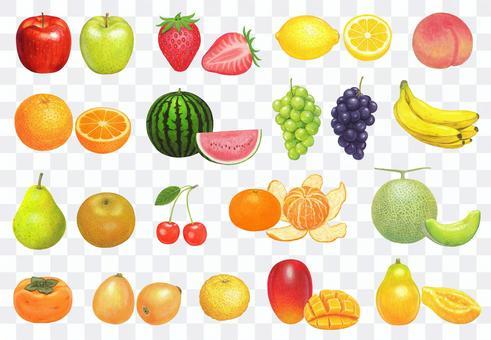 水果插圖集