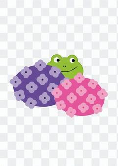 繡球和青蛙