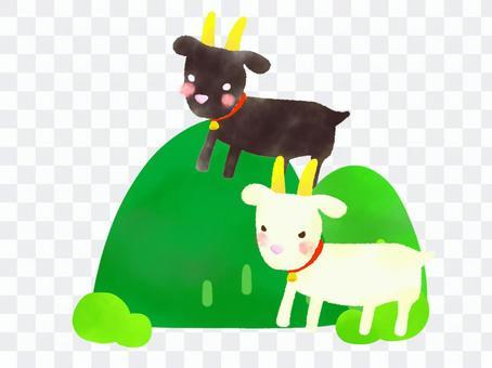 山羊在山上