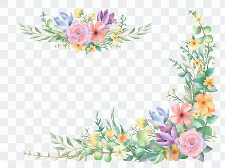 多彩的野花植物框架