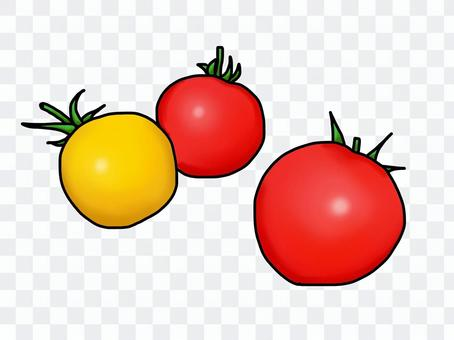 迷你番茄(手繪風格)