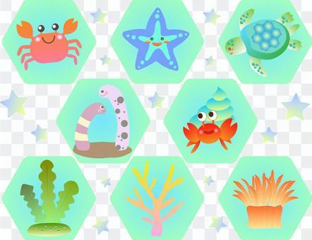 Sea creature icon set
