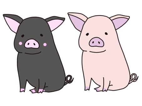 Illustration of cute pig and black pig