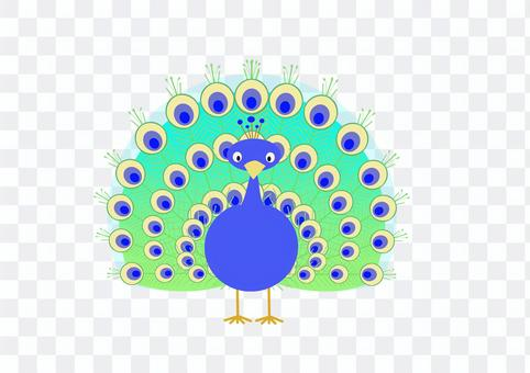 Illustration of a fat peacock