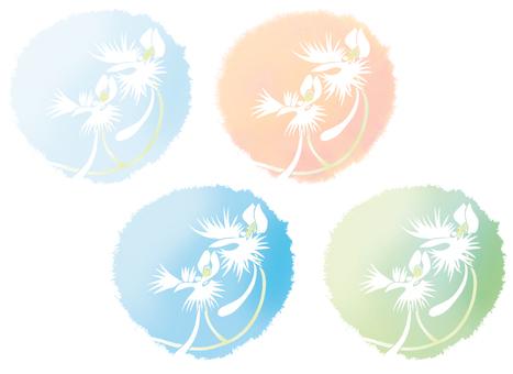 一套 4 種白鷺花 白花插圖