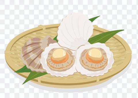 漏勺扇貝(3)
