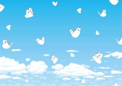 蝴蝶在蔚藍的天空中飛翔