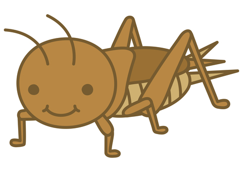 Illustration of a cute cricket
