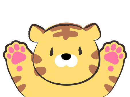 老虎歡呼的插圖