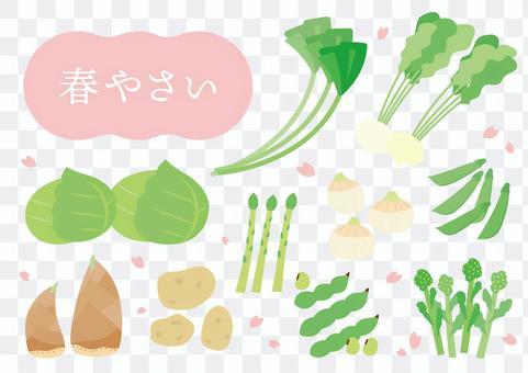 봄 야채 다양한 세트