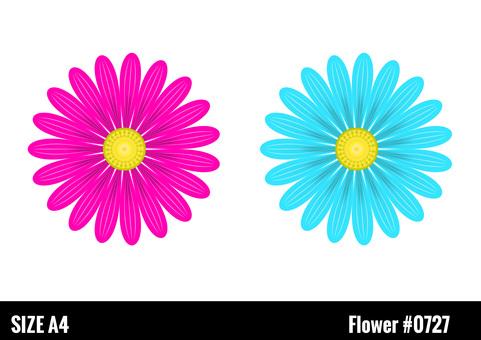 Vivid ornamental flowers