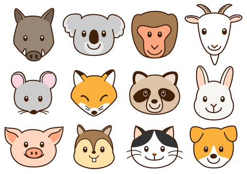 Animal face 2