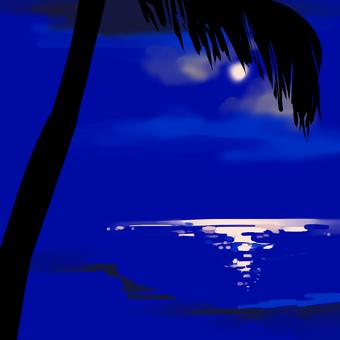 棕櫚樹和夜晚的大海