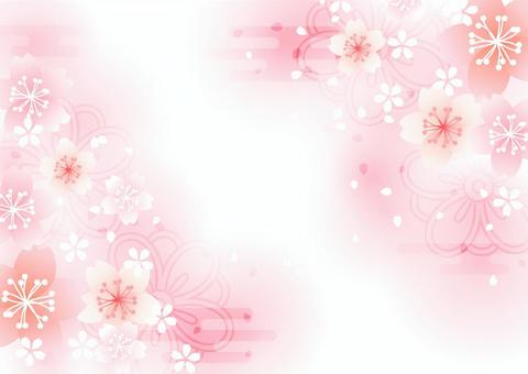 Japanese-style cherry blossoms with a fluffy background