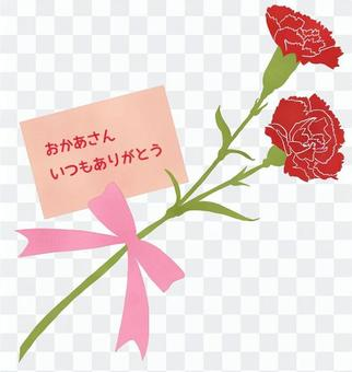 Carnation (with Mother's Day card)