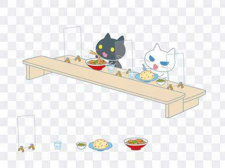 White cat, ramen