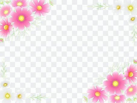 秋向け・コスモスのフレーム4