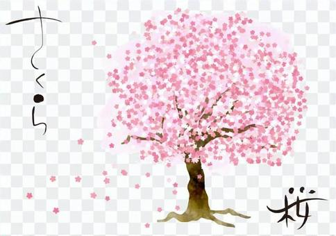 Watercolor style single cherry blossom