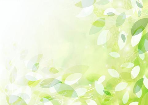 A green background of transparency and freshness