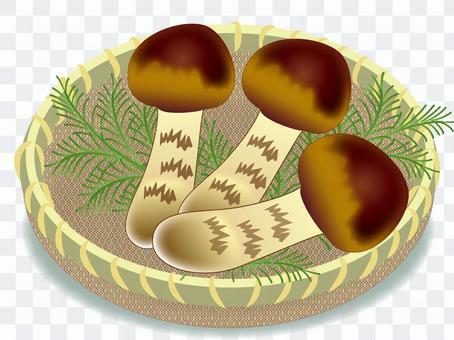 송이 버섯 모듬 (원숭이 입 3 개)