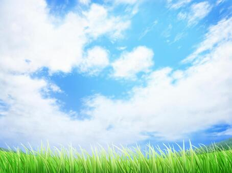 Grass and blue sky background / wallpaper frame