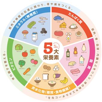 5大營養素