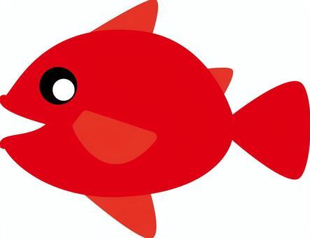 魚-001