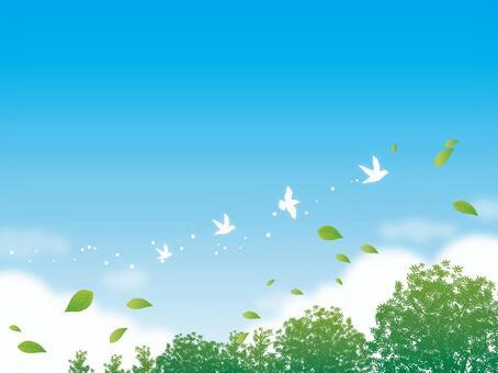 天空和鳥兒飛行與樹木的背景