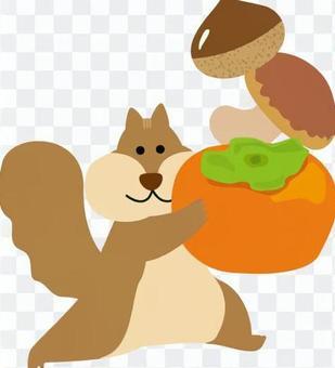 松鼠和秋天的味道