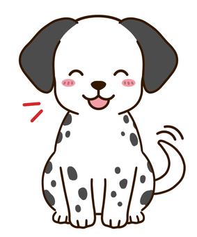 歡喜達爾馬提亞狗