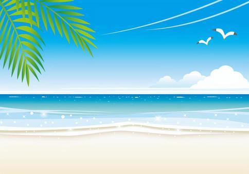 海灘的風景在海灘的