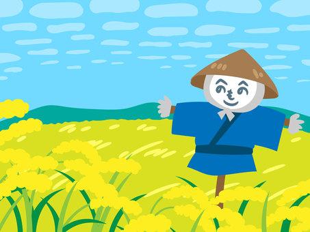 秋天的稻田和稻草人