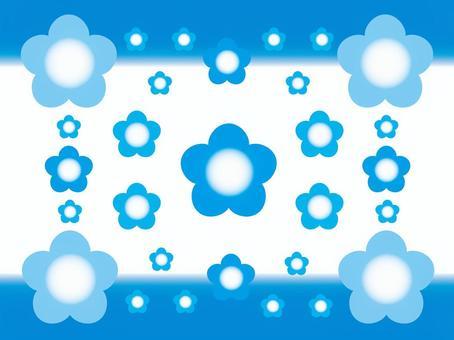 Nemophila3藍色