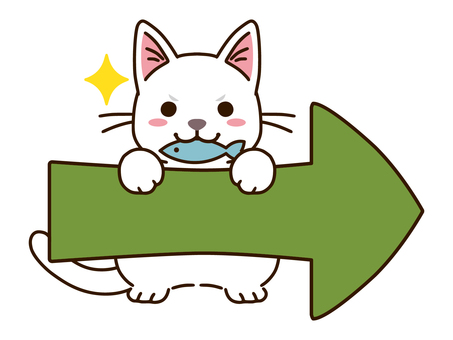 Right arrow and white cat