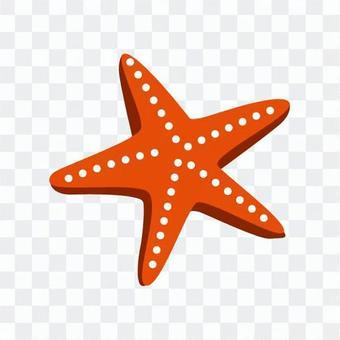 Red Starfish 3