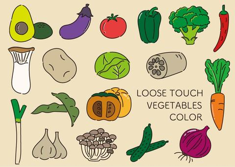 鬆散的蔬菜套裝(彩色)