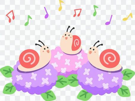蝸牛在繡球上唱歌