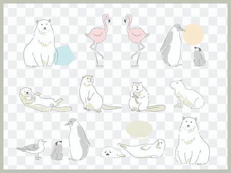 Waterside animals