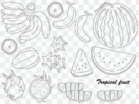 熱帶水果套裝2(畫線)
