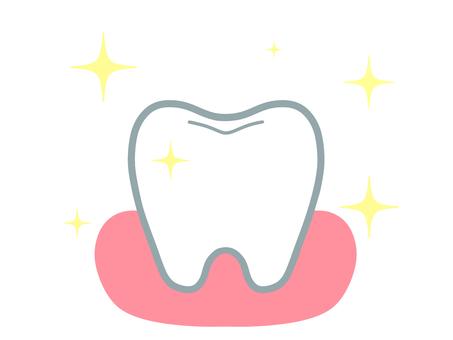 閃亮的牙齒和牙齦