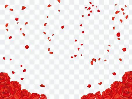 玫瑰開花雪效果01