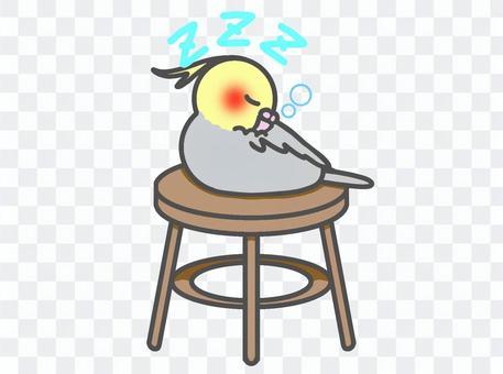 Cockatiel chair to sleep