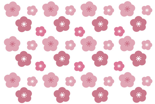 Background / wallpaper with plums and cherry blossoms in full bloom