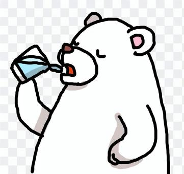 White bear with water